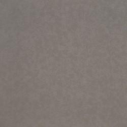 DOVE GREY - CORIAN QUARTZ SAMPLE