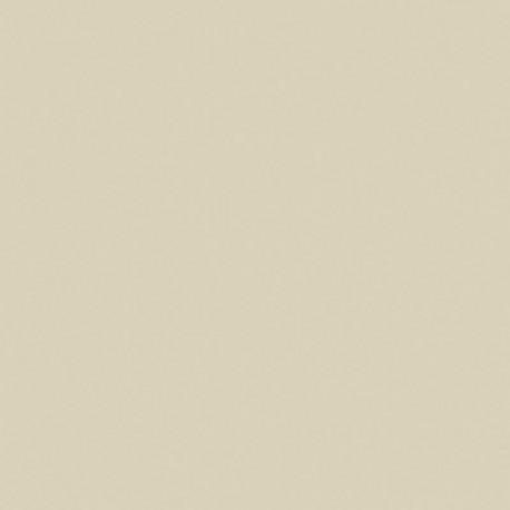 BONE - CORIAN SAMPLE