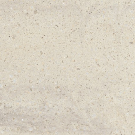 CLAM SHELL - CORIAN SAMPLE