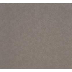 Dove Grey Leathered Corian Quartz
